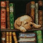 Chiot dans la bibliothèque - Vervaco