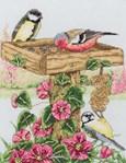 The Bird Table - Anchor