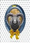Le mouflon - Marie Coeur