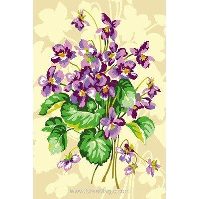 Violettes - SEG