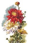 Modèle broderie au point de croix chrysanthèmes de RTO