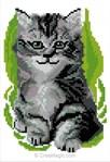 Mini kit Luc Création à broder chaton yeux vert