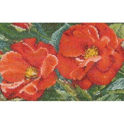 Kit Thea Gouverneur à broder orangeade rose sur aida