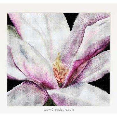 Magnolia sur aida point de croix de Thea Gouverneur à broder