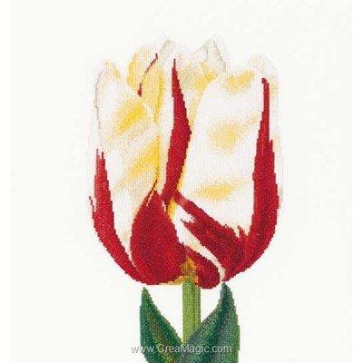 Kit à broder au point de croix flamed single late tulip sur lin de Thea Gouverneur