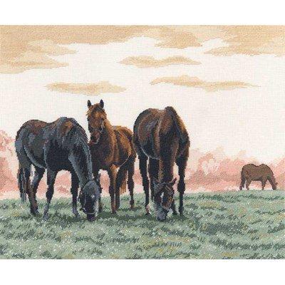 Point croix de DMC à broder chevaux dans la brume