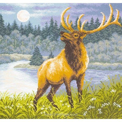 Kit broderie imprimée aida red deer cerf de Collection d'art