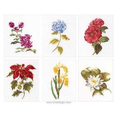 Modèle au point de croix Thea Gouverneur six floral studies sur lin