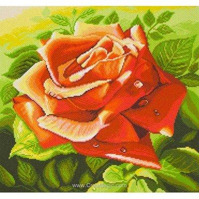 Kit broderie imprimée red rose sur aida de Collection d'art