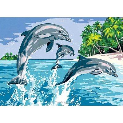 Les jeux marins des dauphins canevas - SEG