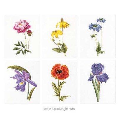 Kit Thea Gouverneur six floral studies sur lin