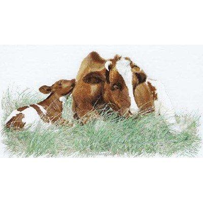 Broderie de Thea Gouverneur au point de croix vache marron au repos sur aida