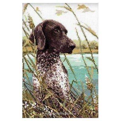 Kit chien de chasse - RIOLIS