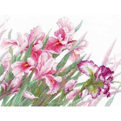 Kit RIOLIS à broder au point de croix iris roses
