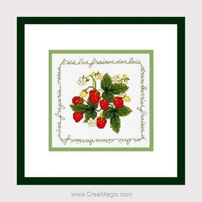 Point de croix compté les fraises rouges - Le Bonheur Des Dames