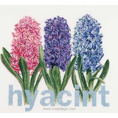 Tableau broderie point de croix Thea Gouverneur hyacinth sur aida