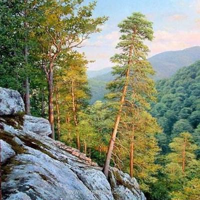 Broderie diamant les pins de la montagne - Diamond Painting