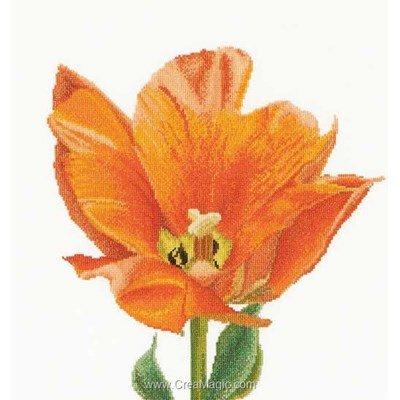 Kit orange triumph tulip sur aida de Thea Gouverneur