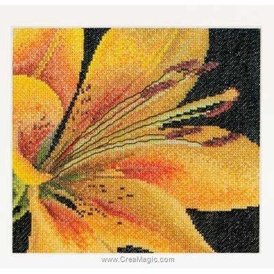 Kit au point de croix compté Thea Gouverneur lily sur aida