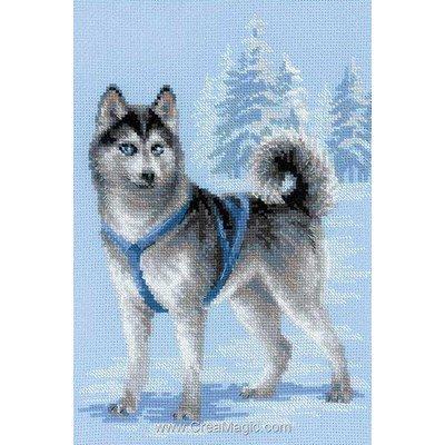 Husky de neige point de croix de RIOLIS à broder