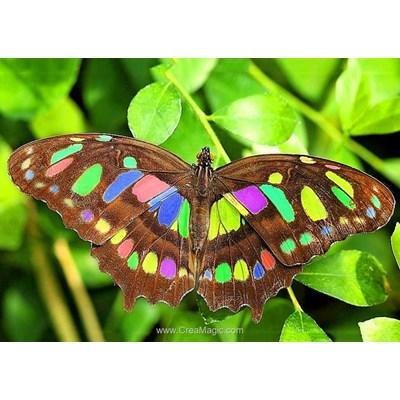 Broderie diamant papillon lumineux de Collection d'art