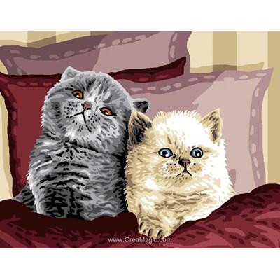 Duo de chats sur l'oreiller canevas chez Luc Création