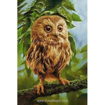 Broderie diamant owl mickie de Wizardi