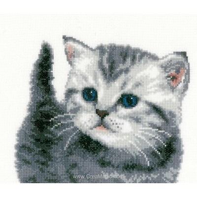 Point de croix compté chaton gris de Vervaco