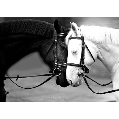 Kit broderie diamant Collection d'art chevaux noir et blanc