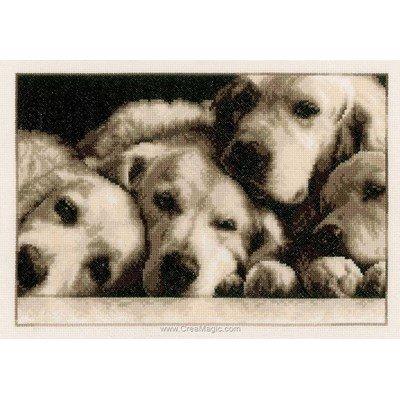 Portrait de labradors broderie point compté - Vervaco