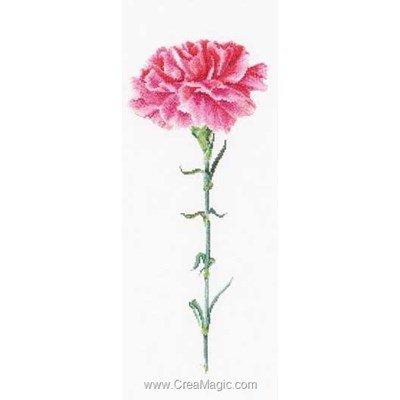 Kit broderie point compté carnation pink sur aida de Thea Gouverneur