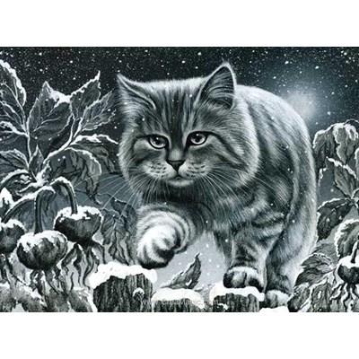 Broderie diamant grey cat - Diamond Painting