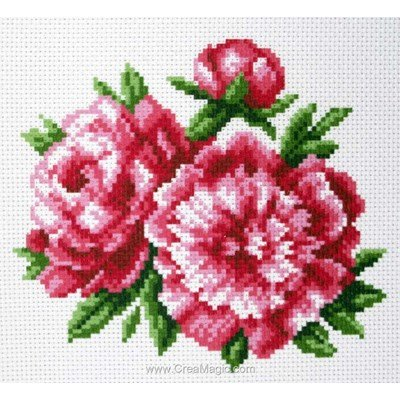 Broderie imprimée aida pivoines - peonies de Collection d'art