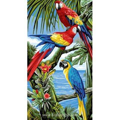 Rafael Angelot canevas perroquets des caraïbes
