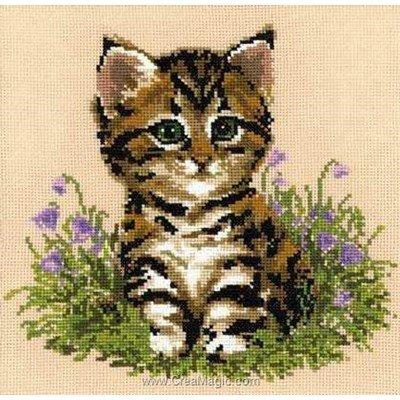 Broderie au point compté RIOLIS chaton tigré