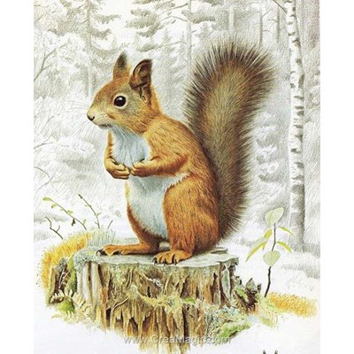 Kit broderie diamant squirrel de Diamond Painting