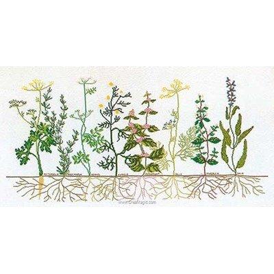 Kit à broder point de croix Thea Gouverneur herbs sur aida