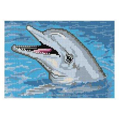 Tête de dauphin kit Bruno D'Artois à broder au point croix