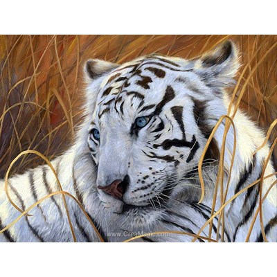 Kit broderie diamant le tigre blanc de Diamond Painting