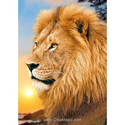 Kit broderie diamant le lion roi des animaux - Wizardi