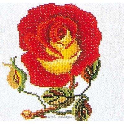 Point de croix à broder rose red-yellow sur aida de Thea Gouverneur