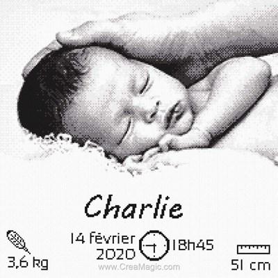 Broderie mon tendre bébé de Marie Coeur