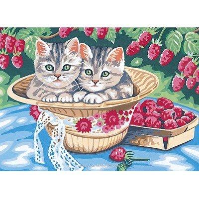 Canevas premier été des chatons - Margot