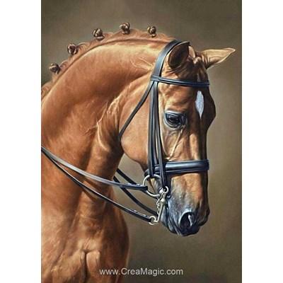 Kit broderie diamant horse jumping de Wizardi