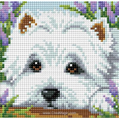 Kit broderie diamant dog de Diamond Painting