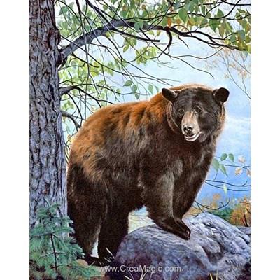 Broderie diamant brown bear de Wizardi