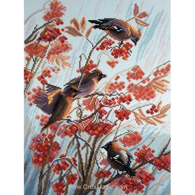 Broderie imprimée aida Collection d'art jaseurs - waxwings birds