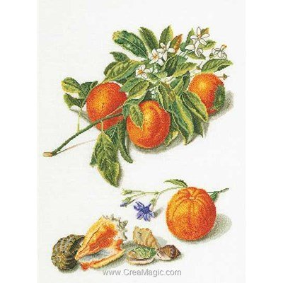 Kit broderie point compté oranges & mandarines sur lin - Thea Gouverneur