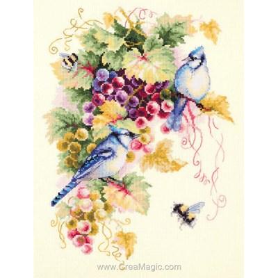 Modèle broderie au point de croix Magic Needle geai bleu et grappe de raisins