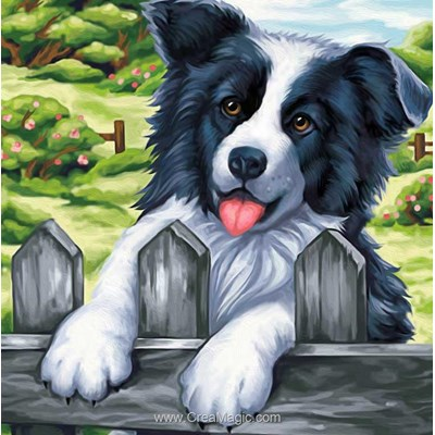 Kit broderie diamant Diamond Painting joyeux border collie